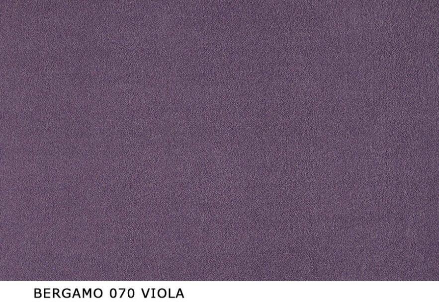 Bergamo_070_Viola