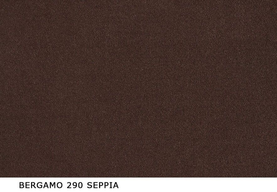 Bergamo_290_Seppia