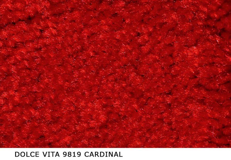 Dolce-Vita_9819_Cardinal