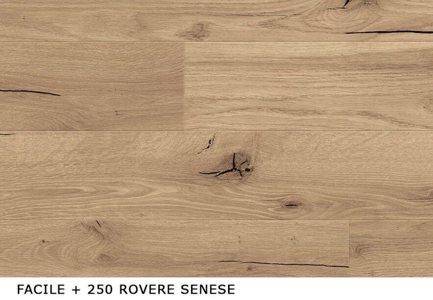 Facile-+_250_Rovere_Senese