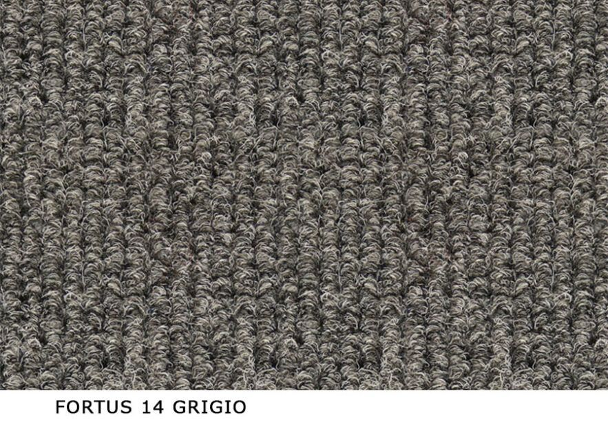 Fortus_14_grigio