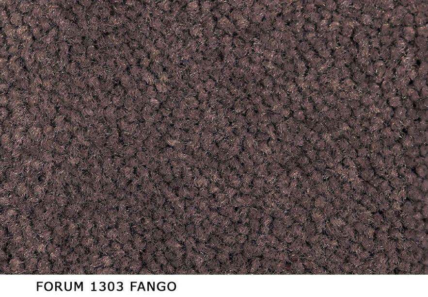 Forum_1303_Fango