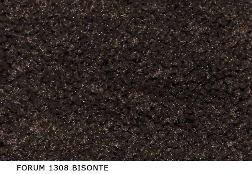 Forum_1308_Bisonte