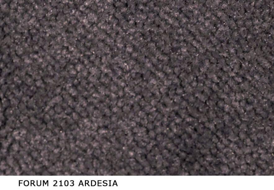 Forum_2103_Ardesia
