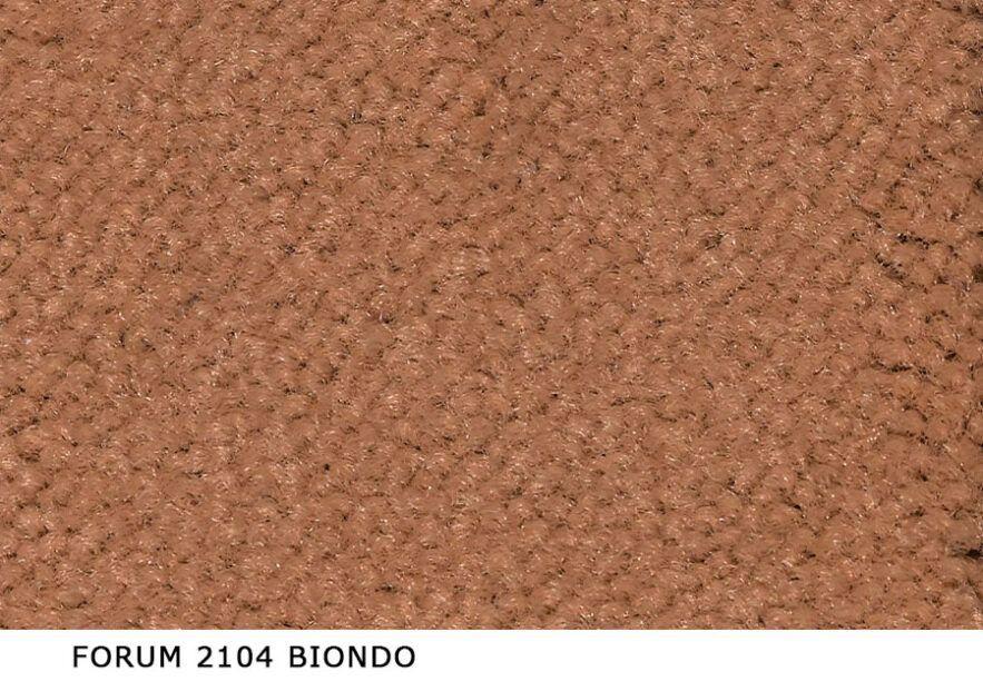 Forum_2104_Biondo