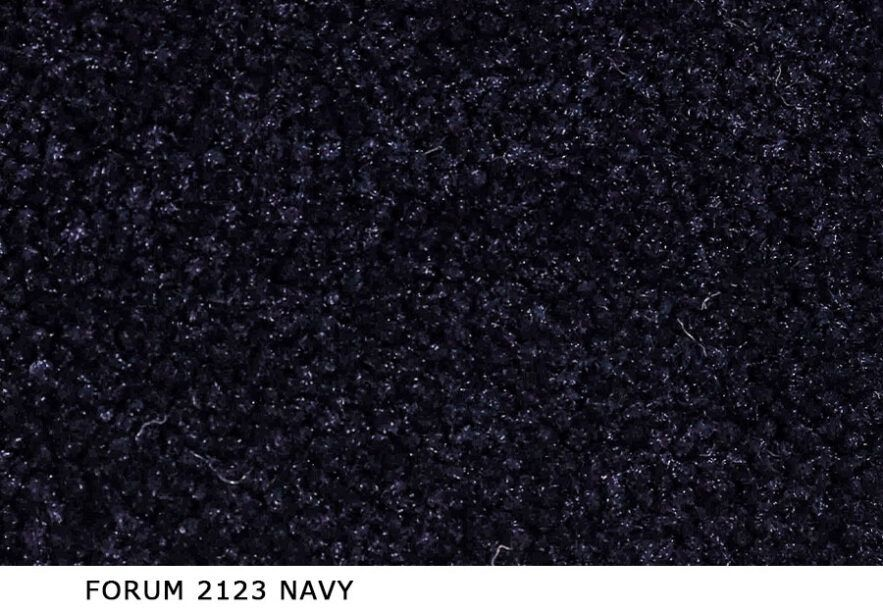 Forum_2123_Navy