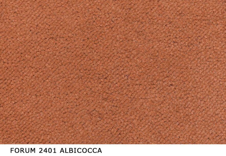 Forum_2401_Albicocca