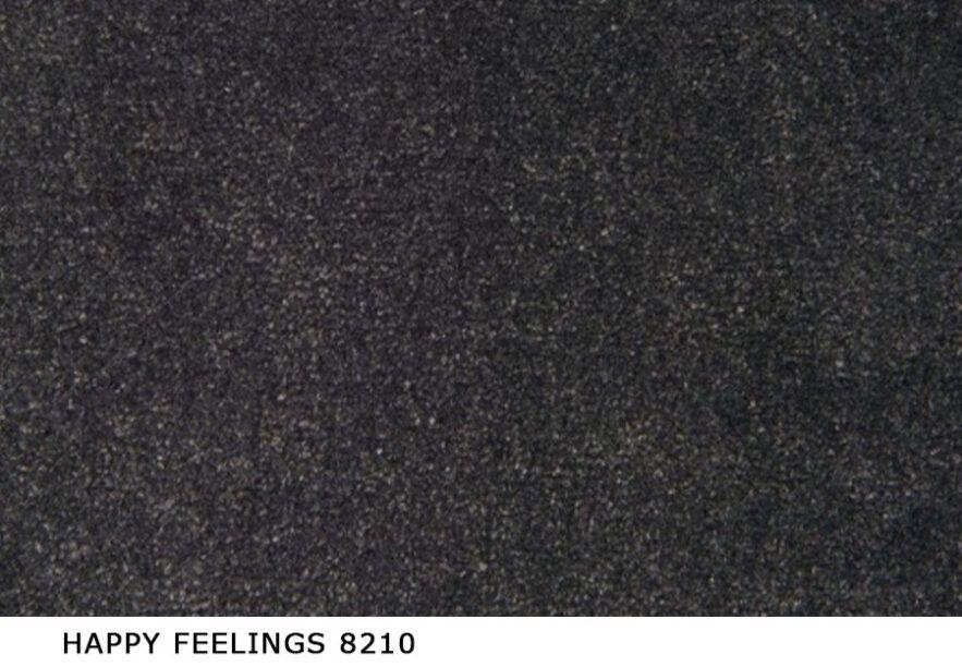 Happy_Feelings_8210