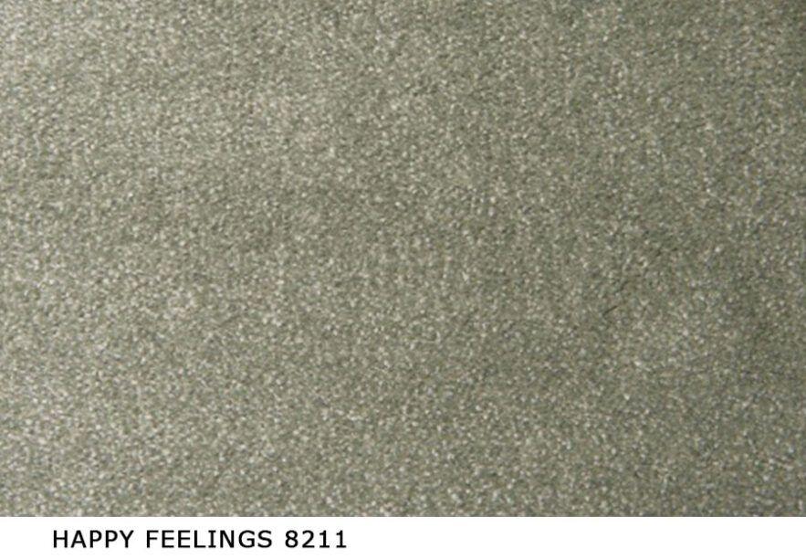 Happy_Feelings_8211
