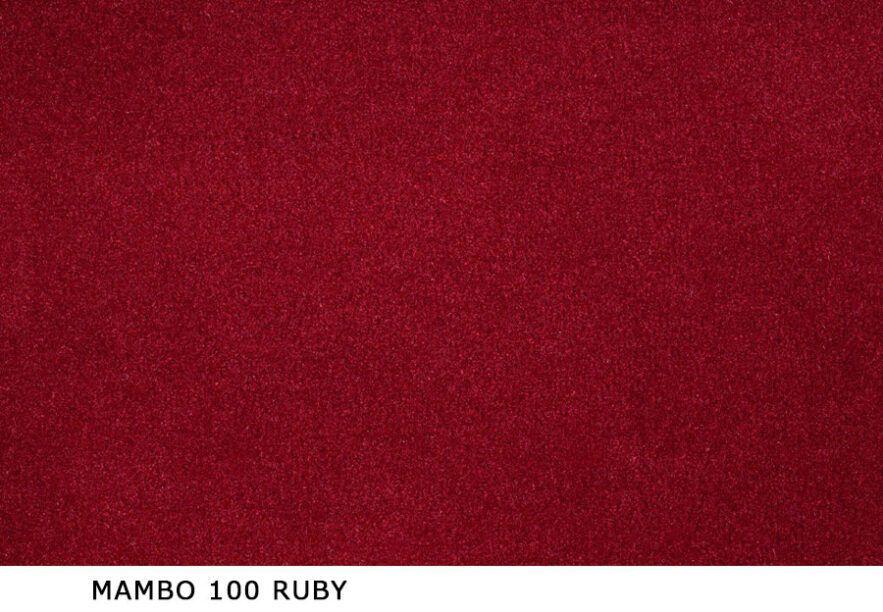 Mambo_100_Ruby