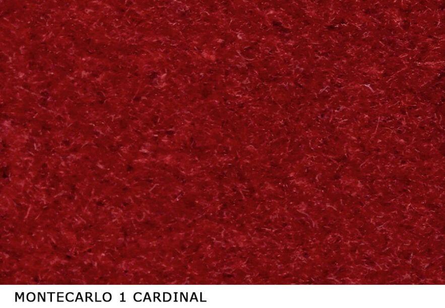 Montecarlo_1_Cardinal