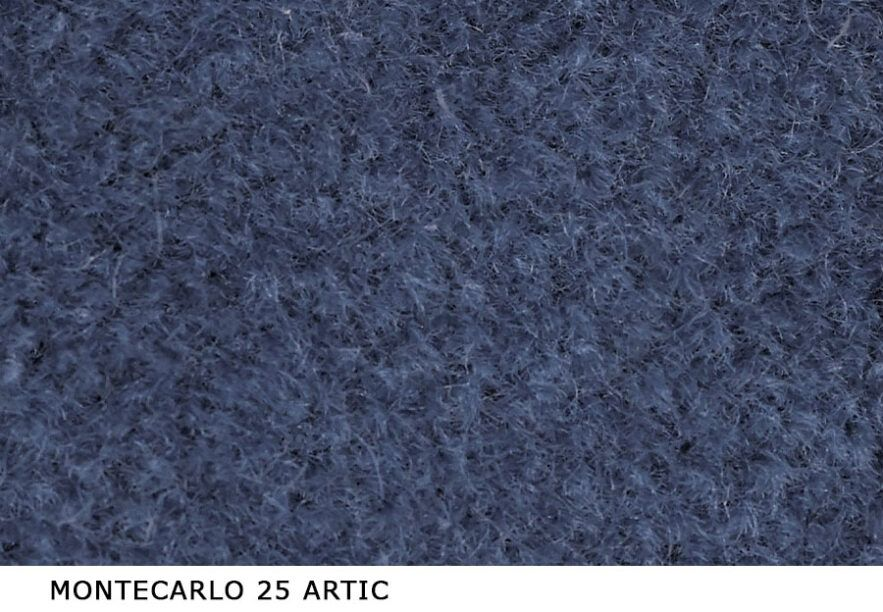 Montecarlo_25_Artic