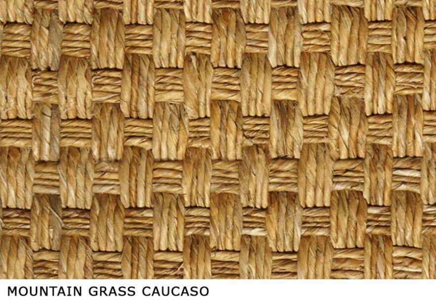 Mountain_Grass_Caucaso