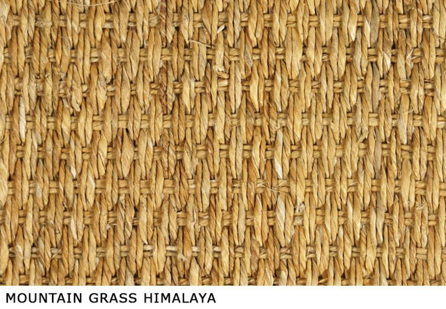 Mountain_Grass_Himalaya