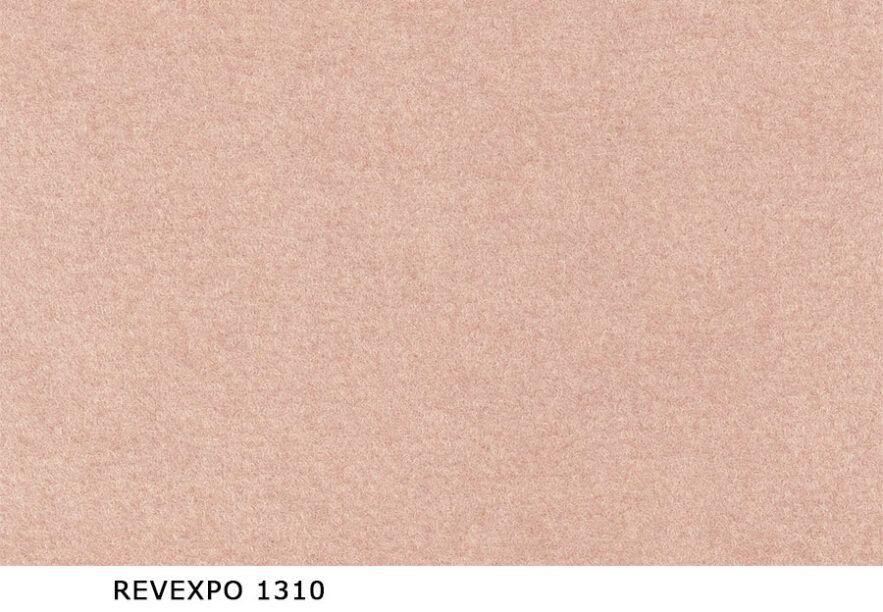 Revexpo_1310
