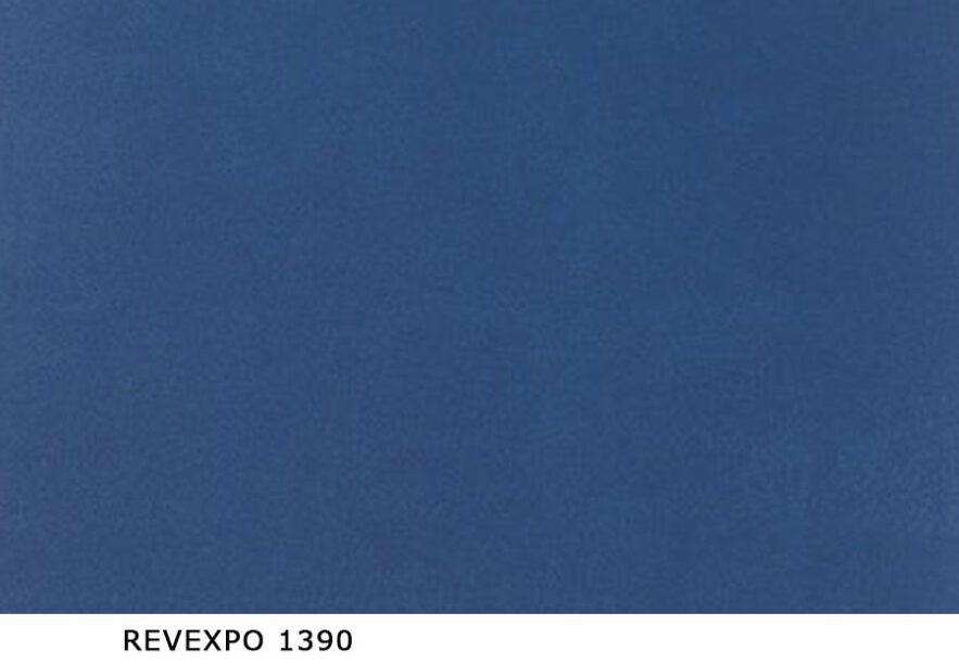 Revexpo_1390