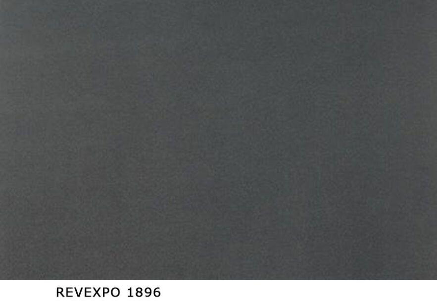 Revexpo_1896