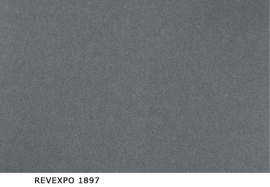 Revexpo_1897