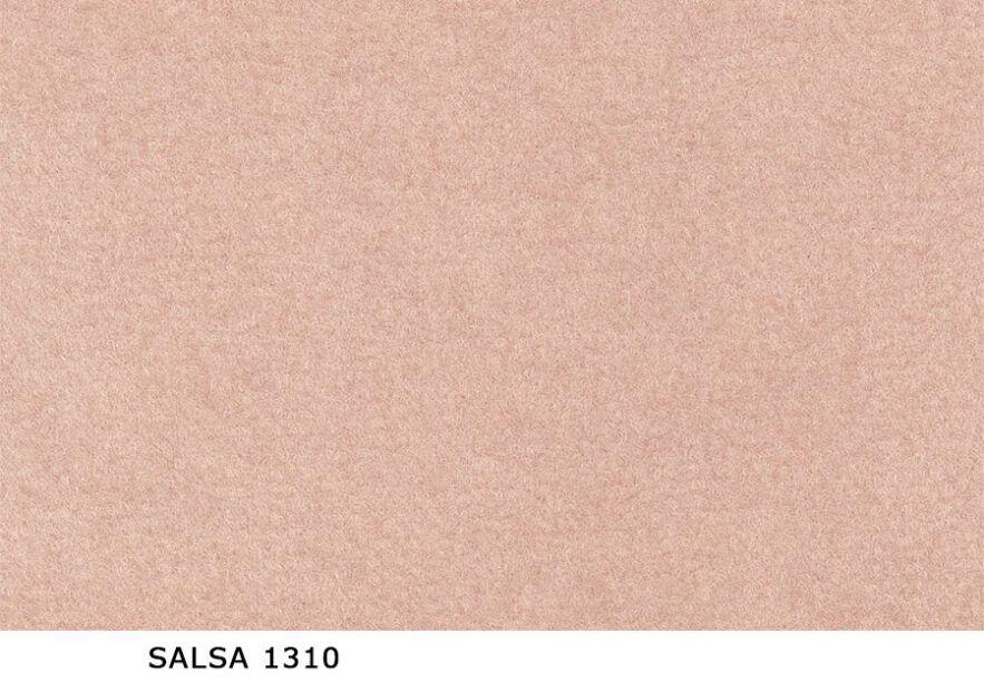 Salsa_1310