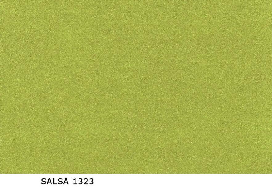 Salsa_1323