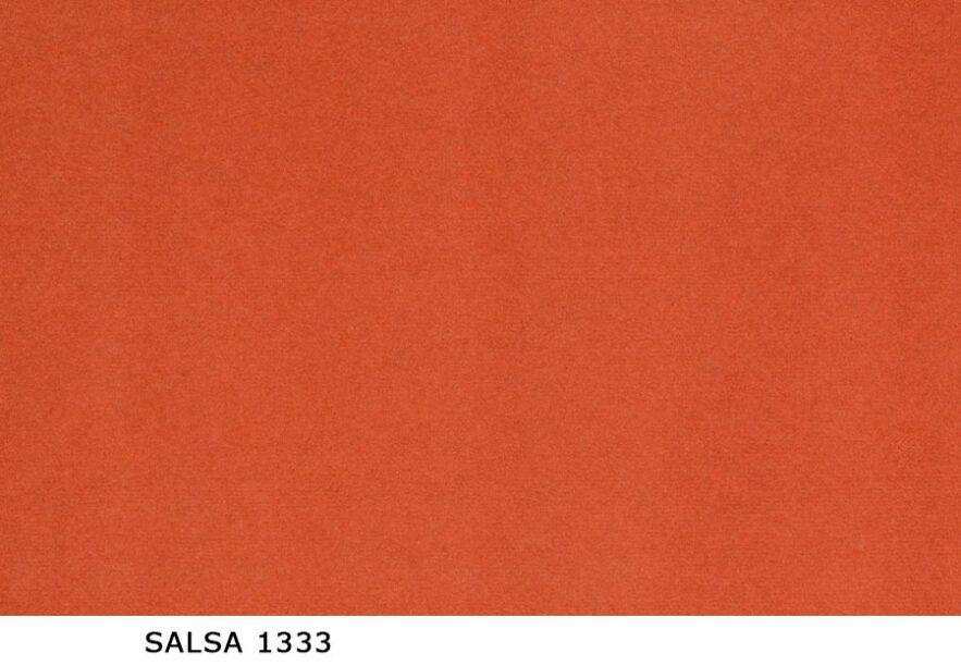 Salsa_1333