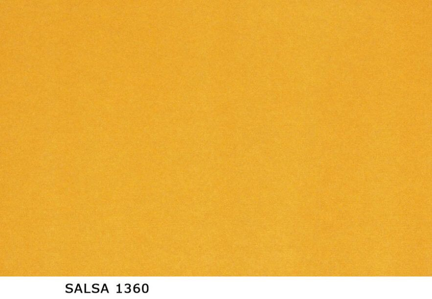 Salsa_1360