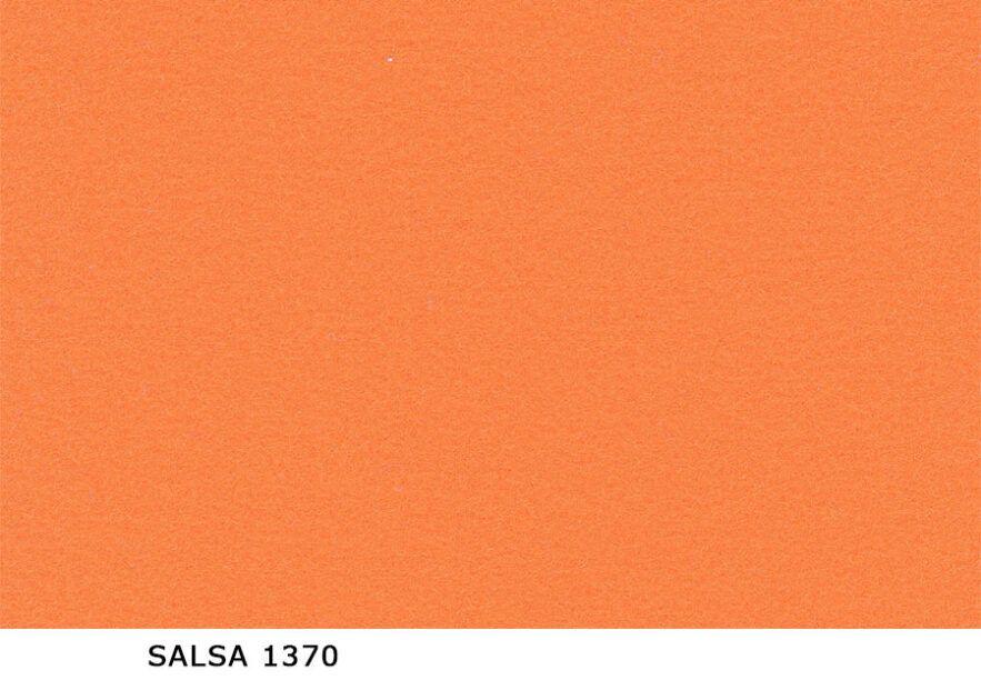 Salsa_1370