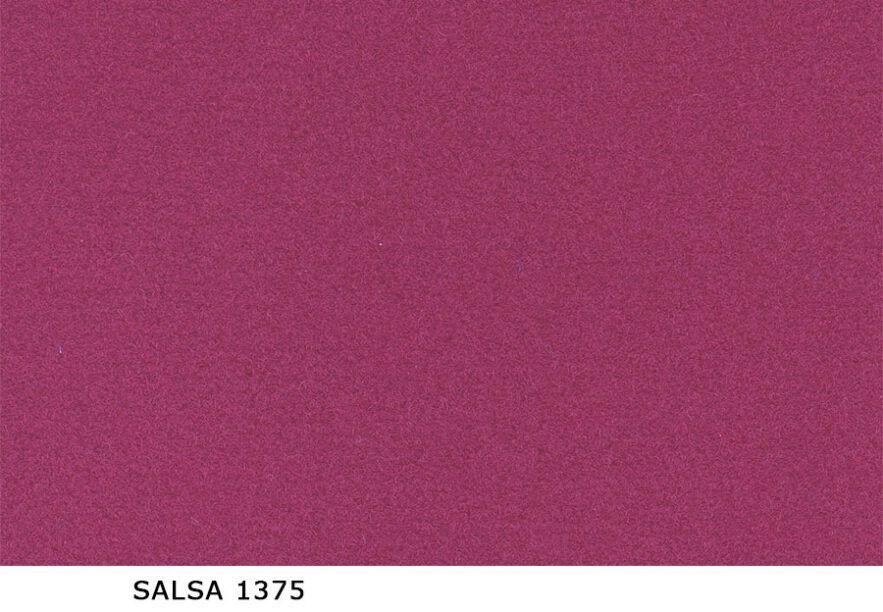 Salsa_1375