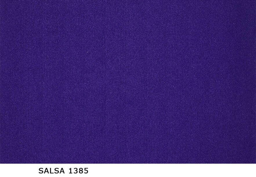 Salsa_1385