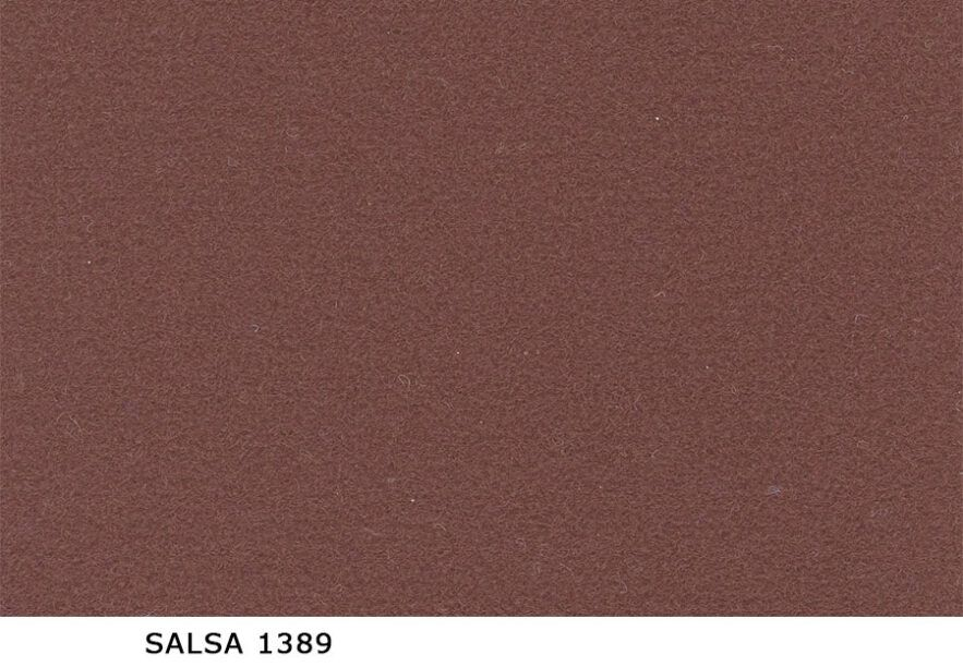 Salsa_1389
