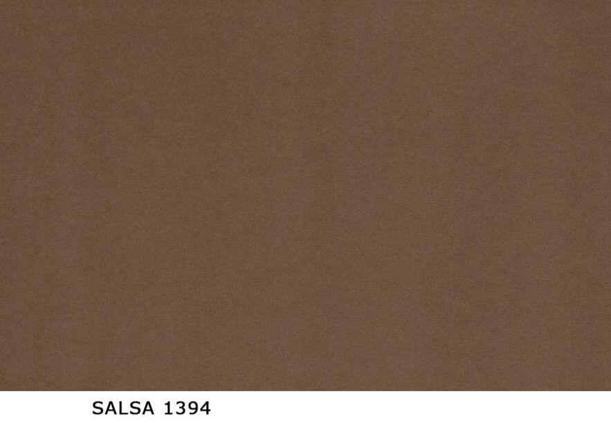 Salsa_1394