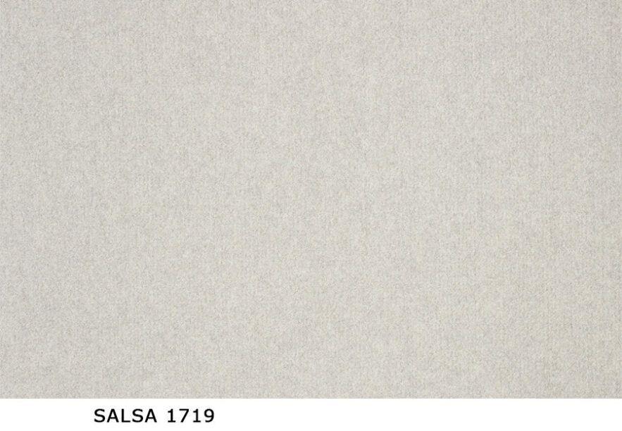 Salsa_1719