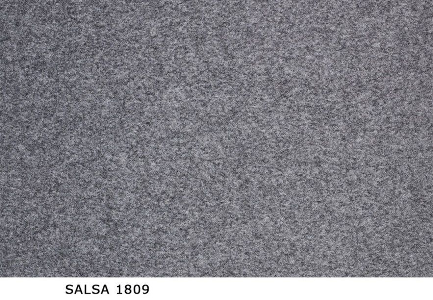 Salsa_1809