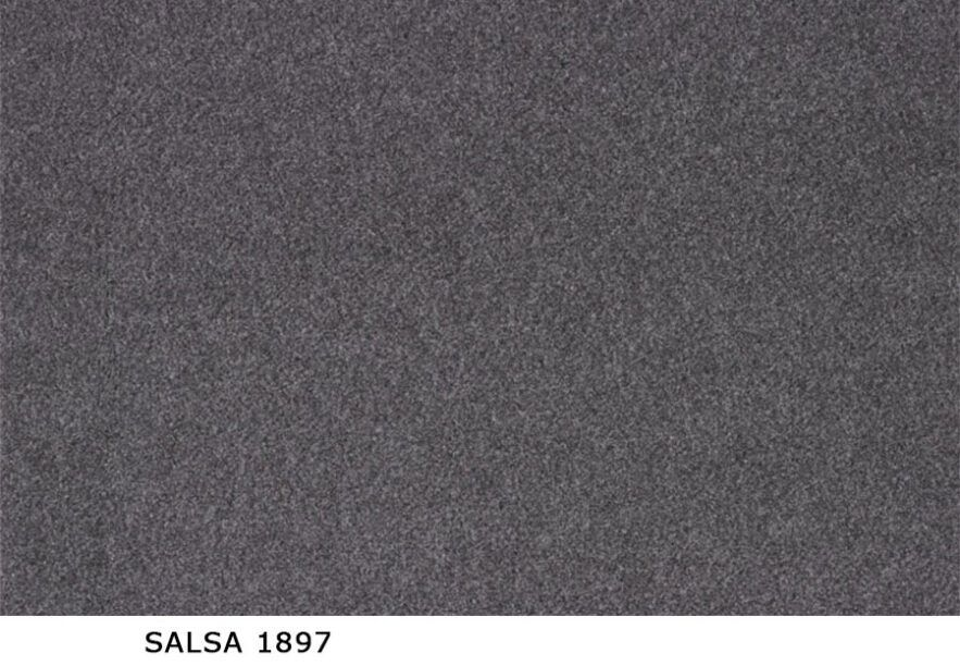 Salsa_1897