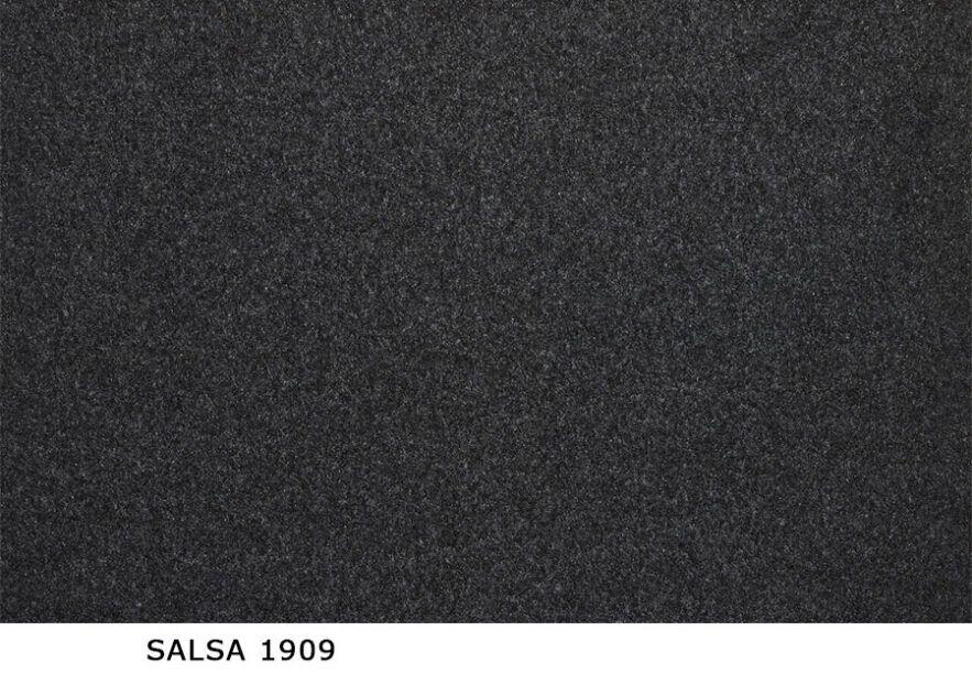 Salsa_1909