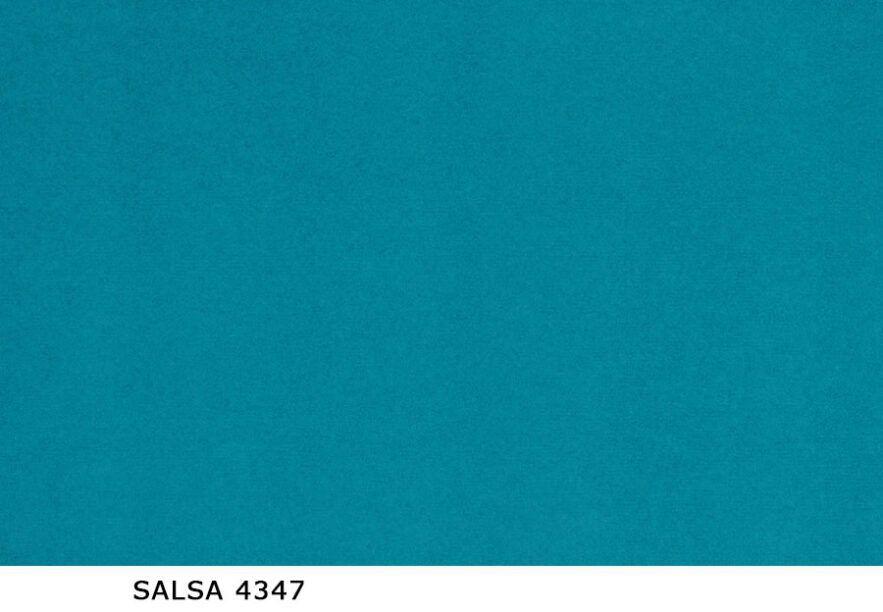 Salsa_4347