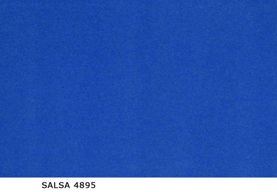 Salsa_4895