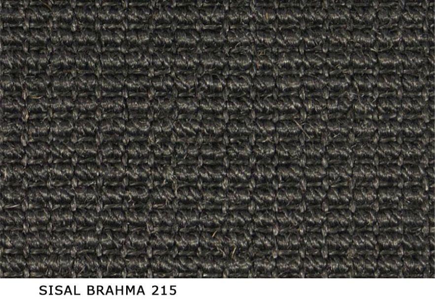 Sisal_Brahma_215