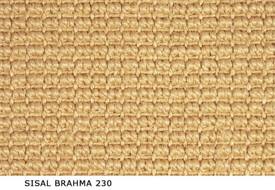 Sisal_Brahma_230