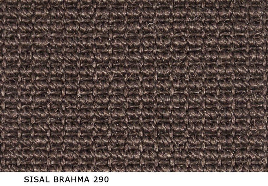 Sisal_Brahma_290