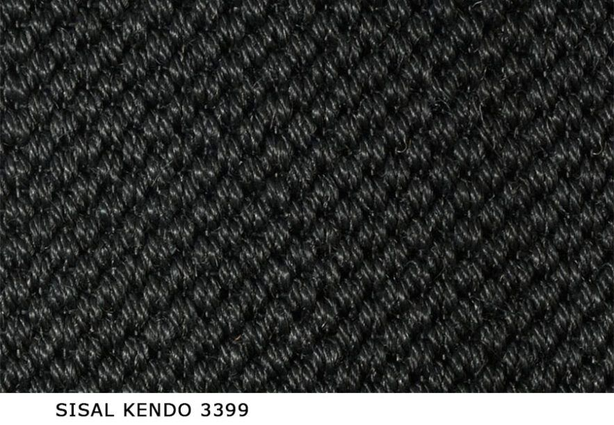 Sisal_Kendo_3399