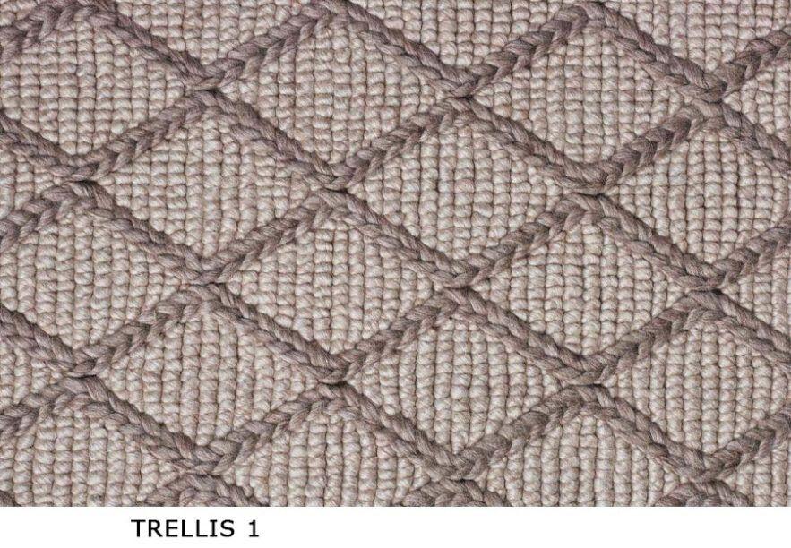 Trellis_1