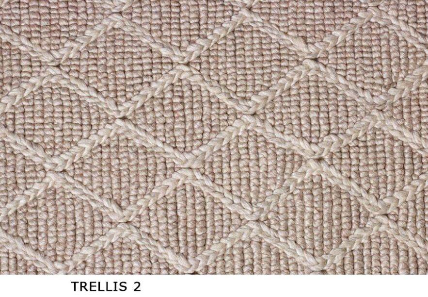 Trellis_2