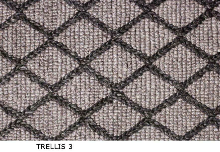 Trellis_3