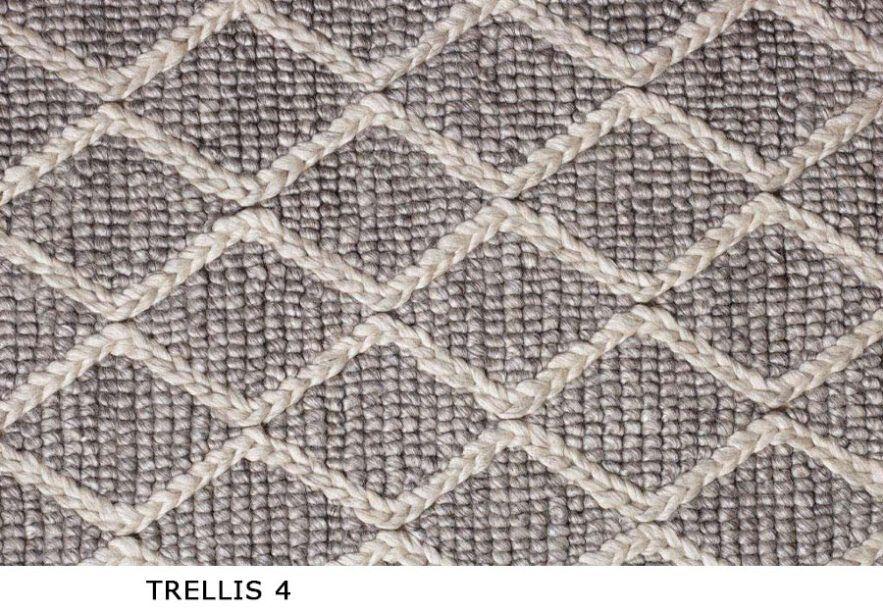 Trellis_4