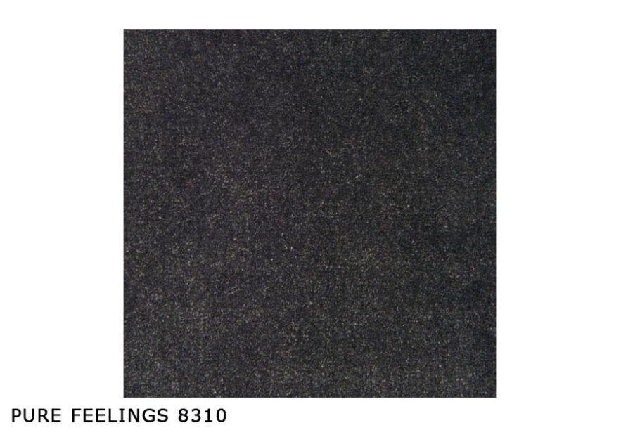 Pure-Feelings_8310
