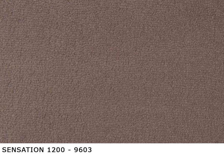 Sensation-1200_9603